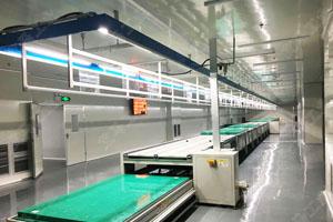 显示屏、OLED屏总装生产线